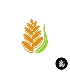 Wheat ear logo vector