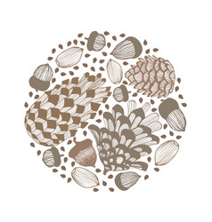 composition with cones and acorns hand drawn vector image vector image