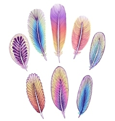 Set of isolated colorful feathers EPS10 vector image