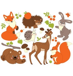 Woodland animals set vector