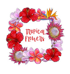 square frame of tropical flowers and palm leaves vector image