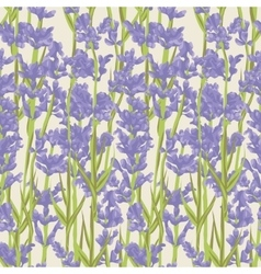 Seamless pattern with lavender flowers vector