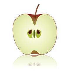 half of apple vector image