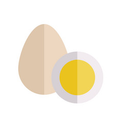 eggs in flat style design vector image