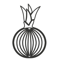 Onion vegetable isolated icon vector