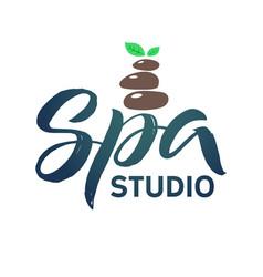 Spa studio logo stroke green leaf vector
