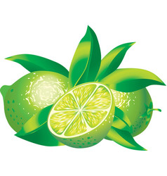 Limes vector