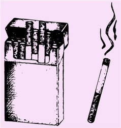 Pack cigarettes lit cigarette smoke vector