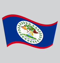 flag of belize waving on gray background vector image