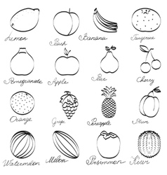Set fruit icons hand-drawn monochrome collection vector