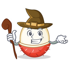 Witch rambutan mascot cartoon style vector