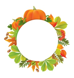 Autumn round banner with pumpkins vector