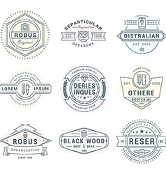 Set of hipster vintage labels logotypes badges for vector