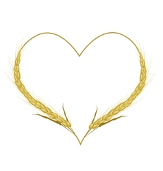 Golden color of wheat in a heart shape vector