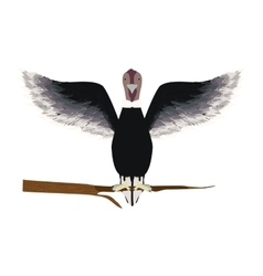Condor animal bird in branch vector