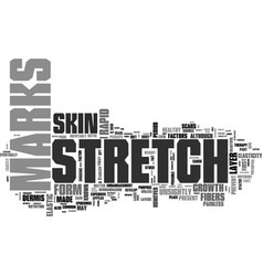 why do stretch marks form text word cloud concept vector image vector image