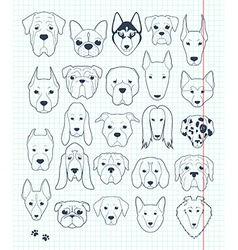 Set of sketches 24 dogs different breeds handmade vector