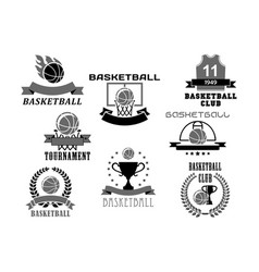 basketball icons set for club championship vector image vector image