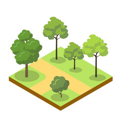 Park alley with big trees isometric 3d icon vector