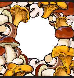 Square frame of sketch mushrooms with round place vector
