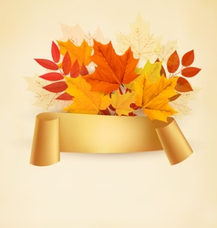 Autumn banner background with colorful leaves vector