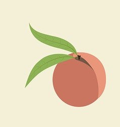 Peach fruit icon vector