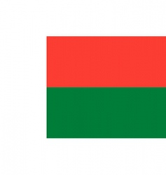 Madagascar flag vector