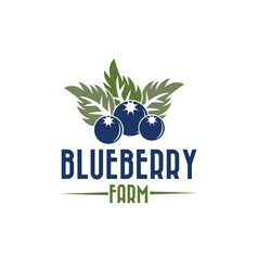 blueberry farm vector image