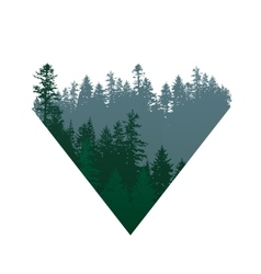 Coniferous forests sign vector