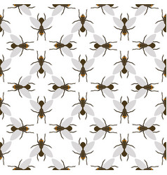 fly insects wildlife entomology bug animal nature vector image