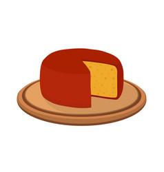 Gouda cheese on plate cartoon flat style vector