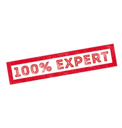 100 percent expert rubber stamp vector