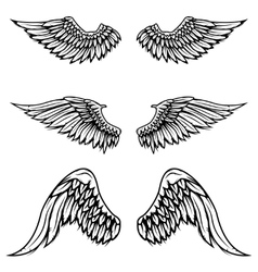 Set of vintage wings isolated on white vector