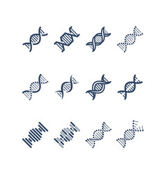 Dna spiral molecule structure icons vector