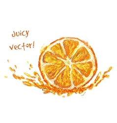 drawing slice of orange vector image