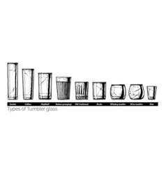 Tumbler glass types vector