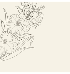 Beautiful fresh iris flowers vector