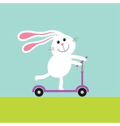 Cute cartoon rabbit hare riding a kick scooter vector