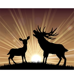 Silhouette a kangaroo and deer vector