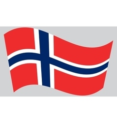 Flag of norway waving vector