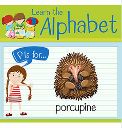 Flashcard letter p is for porcupine vector