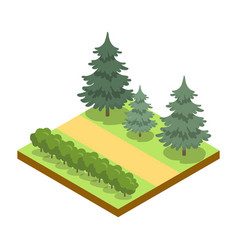 Park alley with bushes and pines isometric 3d icon vector