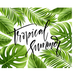 summer poster with tropical palm leaf and vector image vector image