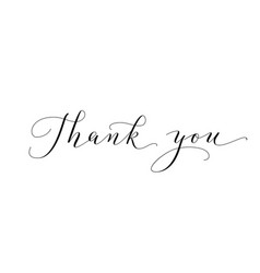 thank you words hand written custom calligraphy vector image vector image