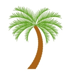 Palm tropical tree isolated icon vector