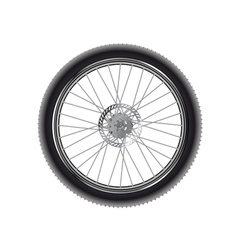 Mountain bike wheel vector