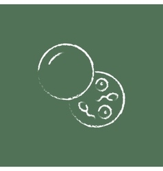 Donor sperm icon drawn in chalk vector