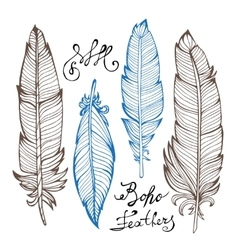 Hand drawn bird feathers closeup isolated on white vector