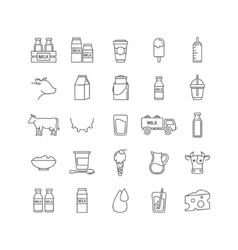 thin line set of milk dairy and cows vector image