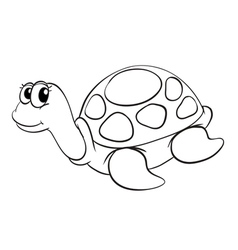 A tortoise sketch vector